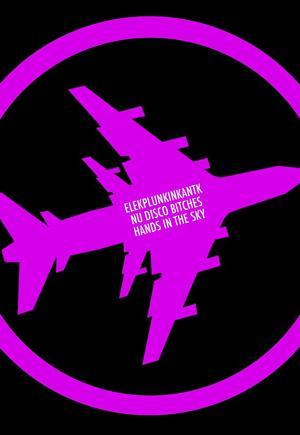 Nu Disco Bitches