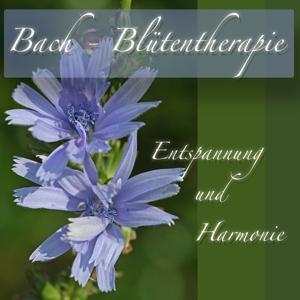 Bach Blütentherapie Entspannung und Harmonie