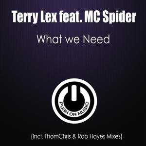 What We Need (Thomchris & Rob Hayes Mixes)
