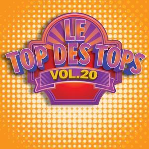 Le Top des Tops des années 80 / 90, Vol. 20