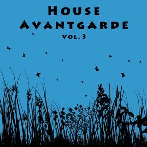 House Avantgarde Vol. 3