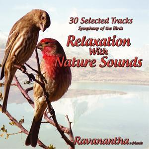 Ravanantha: 30 Selected Tracks: Relaxation With Nature Sounds