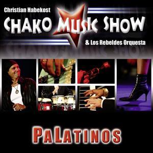 Palatinos