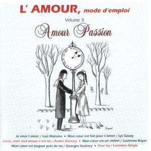 L'amour mode d'emploi, vol. 3 : Amour passion