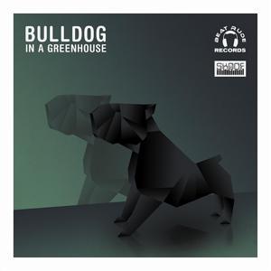 Bulldog In a Greenhouse