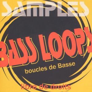 Samples: Bass Loops (Boucles de guitare basse)