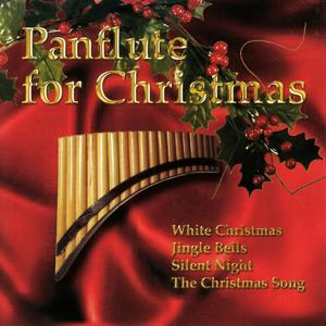 Panflute for Christmas