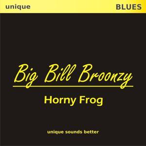 Horny Frog