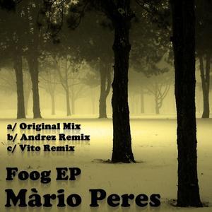Foog Remixes - EP
