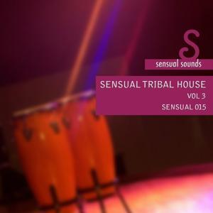 Sensual Tribal House Vol. 3