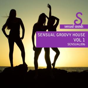 Sensual Sounds Presents Sensual Groovy House 1