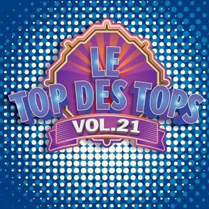 Le Top des Tops des années 80 / 90, Vol. 21