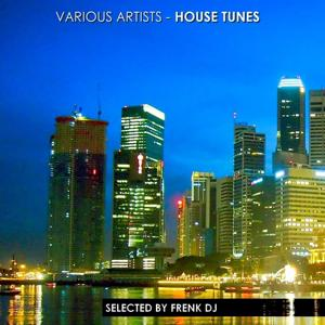 House Tunes (Selected By Frenk DJ)