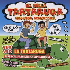 La Bella Tartaruga Che Cosa Mangtera