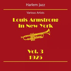 Harlem Jazz (Louis Armstrong In New York Volume 3 1925)