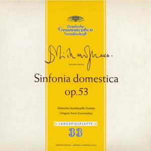 Strauss: Sinfonia domestica / Witt: Symphony in C