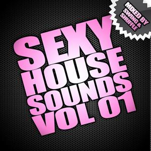 Sexy House Sounds Vol 1 (Mixed By Swing & Shuffle)