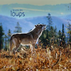 La voix des loups (Wolves)