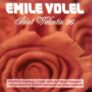 Saint Valentin 96