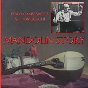 Mandolin Story