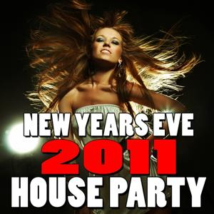 New Years Eve House Party (2011)