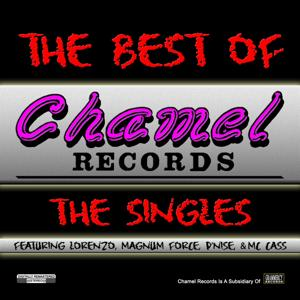 The Best of Chamel Records: The Singles
