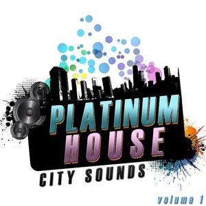 Platinum House Volume 1