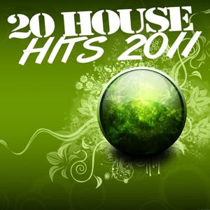 20 House Hits 2011