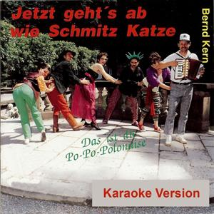 Jetzt geht's ab wie Schmitz Katze (Playback Album)