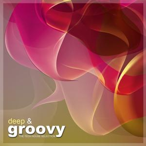 Deep & Groovy (The Tech House Selection)
