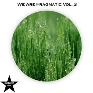 We Are Fragmatic, Vol. 3