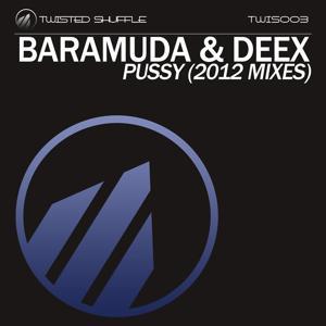 Pussy (2012 Mixes)
