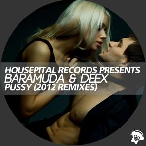 Pussy (2012 Remixes)
