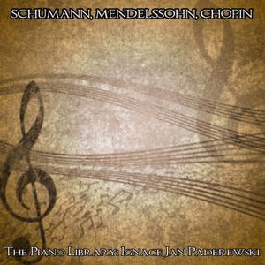 Schumann, Mendelssohn & Chopin: The Piano Library