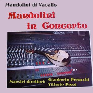 Mandolini in concerto