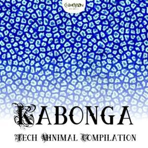 Kabonga (Tech Minimal Compilation)