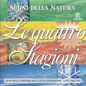 Suoni della natura: le Quattro Stagioni (Ecosound musica relax meditazione)