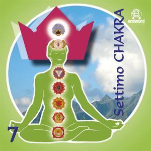 Settimo Chakra, vol. 7 (Ecosound musica relax meditazione)