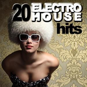 20 Electro House Hits