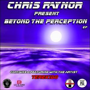Beyond The Perception