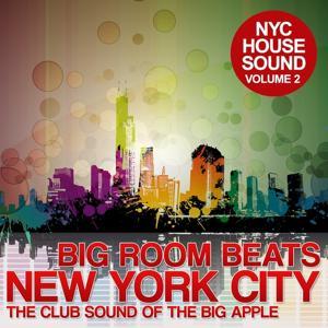 Big Room Beats in New York City, Vol. 2