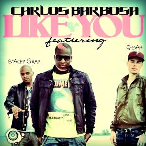 Like You (The Remixes)