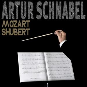 Mozart & Schubert: Piano Sonatas