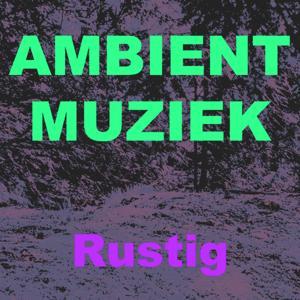 Ambient muziek