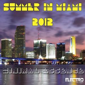 Summer in Miami 2012 (Minimal Essence)