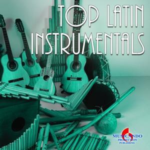 Top Latin Instrumentals (Latin Romantic Instrumentals)