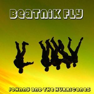 Beatnik Fly