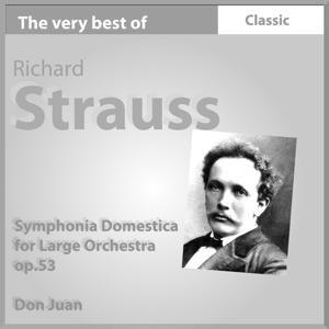 The Very Best of Richard Strauss: Symphonia domestica for Large Orchestra, Op. 53