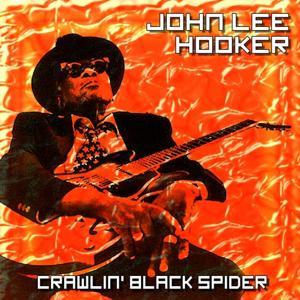 Crawlin' Black Spider