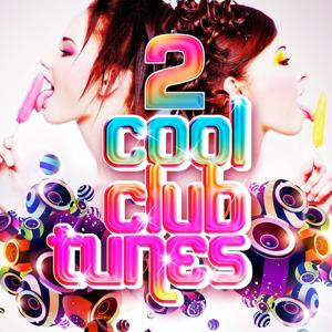 Cool Club Tunes, Vol. 2 (Best in Club, Electro and DJ's Ibiza Disco House Grooves)